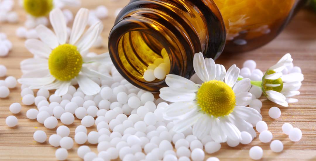 Homeopathic medicine Acorn Homeopathy Bellis Perennis